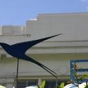 Bluebird Garage